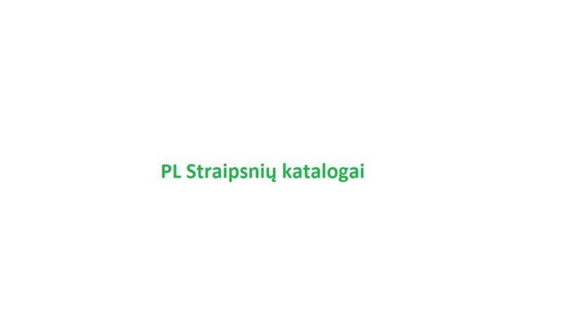 32 PL SEO straipsnių katalogų