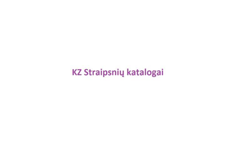 14 KZ SEO straipsnių katalogų
