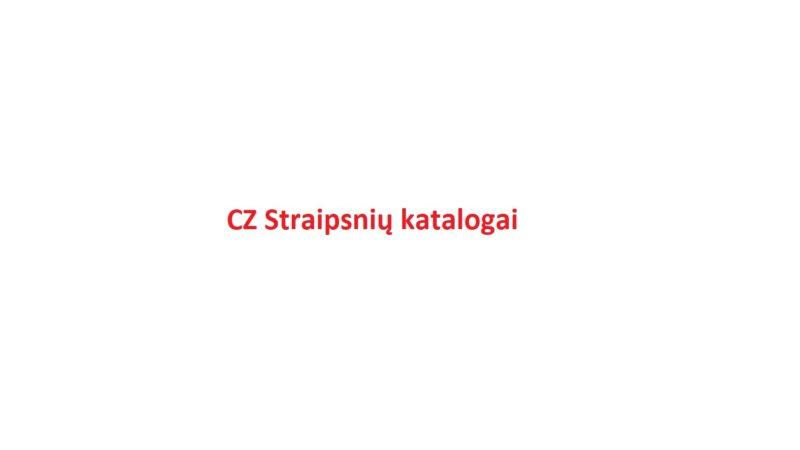 45 CZ SEO straipsnių katalogų